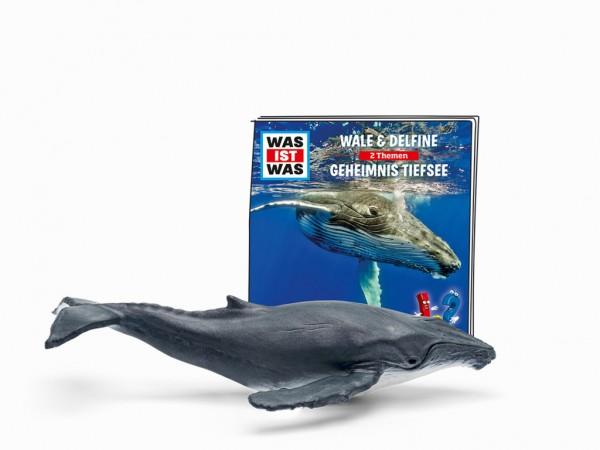 Wale & Delfine / Geheimnis Tiefsee